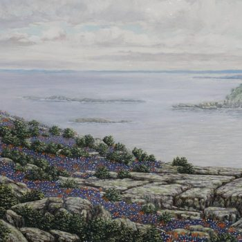 "Daniel Kendrick Texas Bluebonnets on the ""Bluffs on Lake Texoma"" 1969"